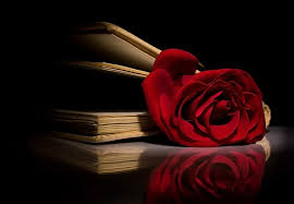 Подарите книгу на день святого Валентина