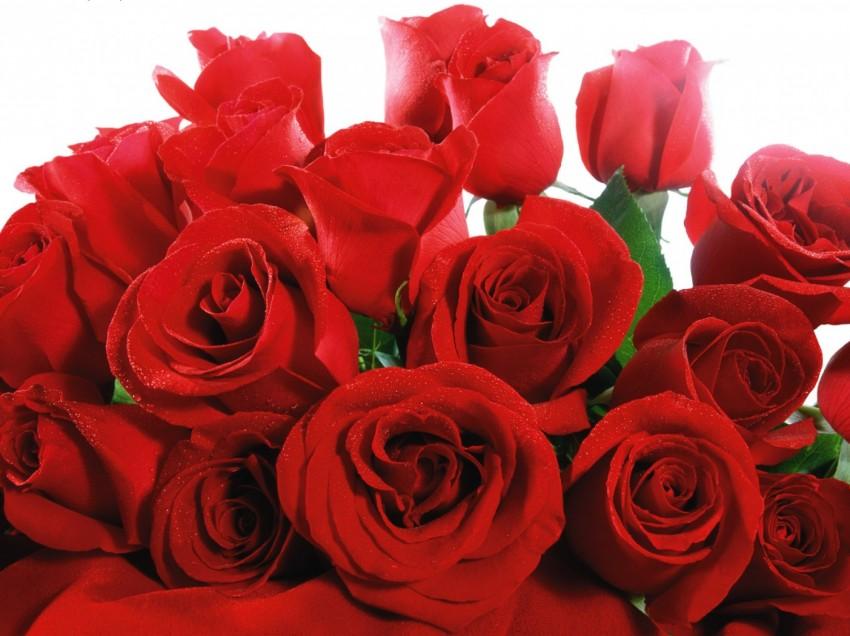 День святого Валентина: легенды и символы. Часть 1.